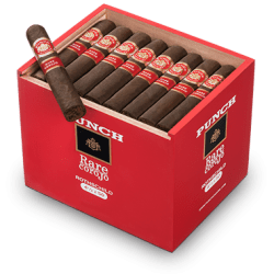 Punch Rare Corojo is Cigar Intel's 2012 Cigar of the Year